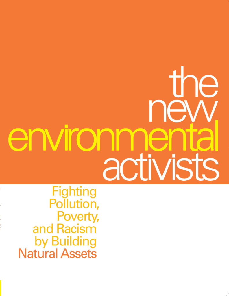 The New Environmental Activists, book design